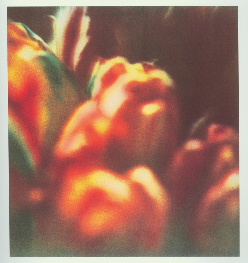 02_Cy Twombly 1